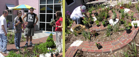 Many plants were installed by volunteers.